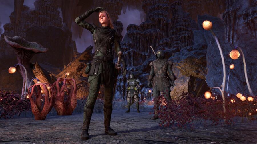 В The Elder Scrolls Online бесплатно раздадут кронные ящики.